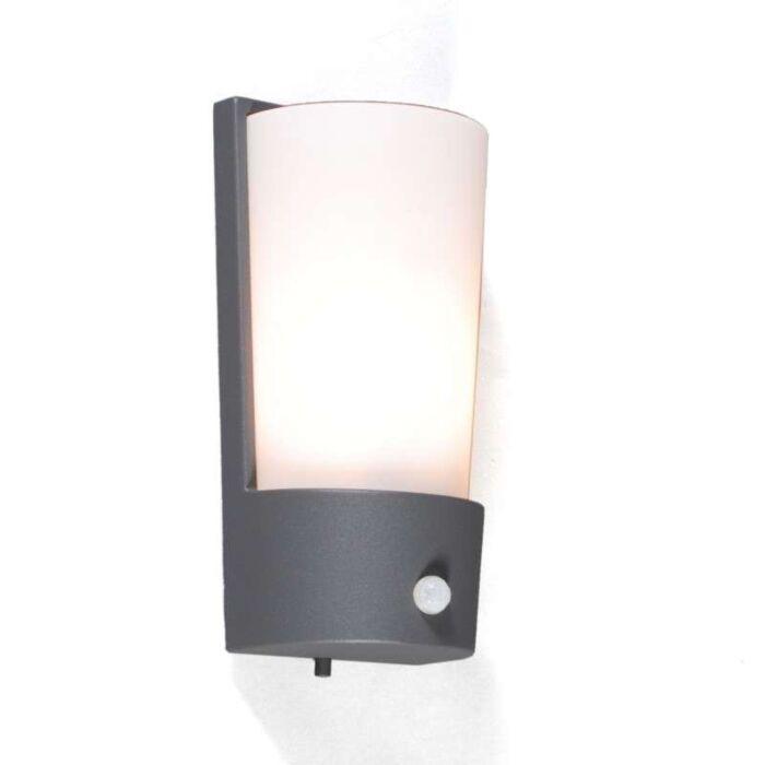 Kültéri-lámpa-Laval-IR-grafit